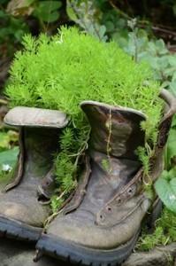 boot planter - Copy